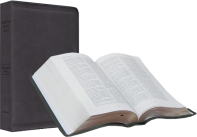 Spirit of Israel Bibles